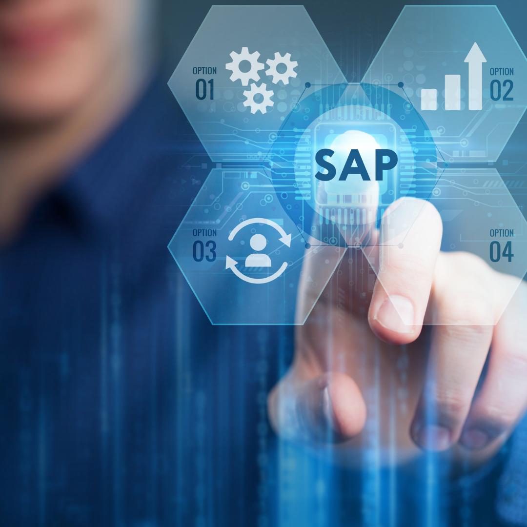 SAP Consultant - Local World Inc.